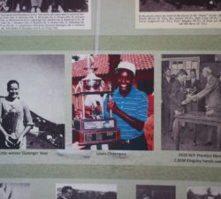 Sally Little on the wall of achievements next to 2 other golfers