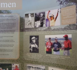 A section of the wall dedicated to Sally Little